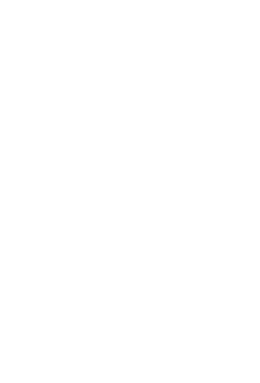 בר גוריון לוגו לבן